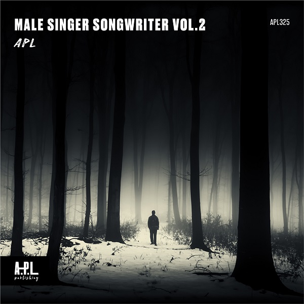 Male Singer Songwriter Vol.2