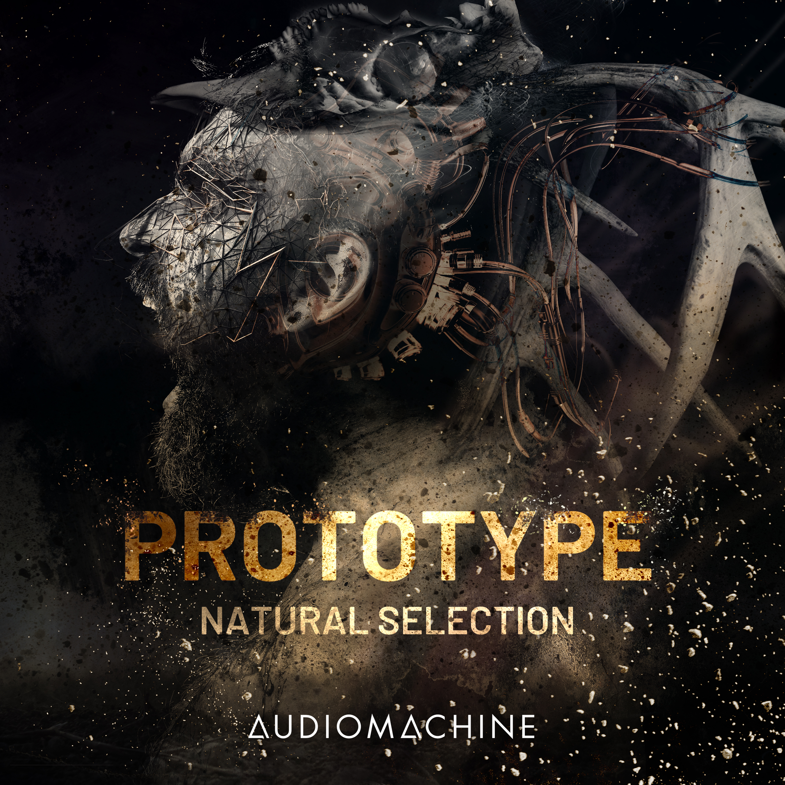 Prototype: Natural Selection