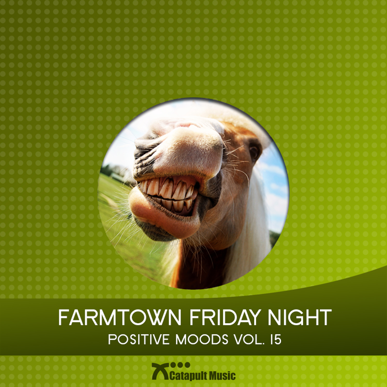 Farmtown Friday Night