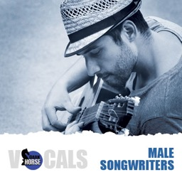 Male Songwriters