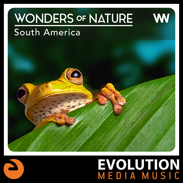 Wonders Of Nature: South America