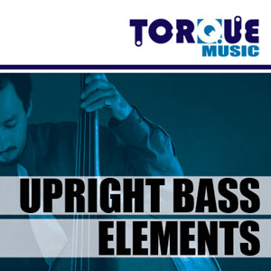 Upright Bass Elements